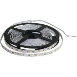 Rouleau 60 LED/m - 12 VDC - IP65 - 800 LM - 30